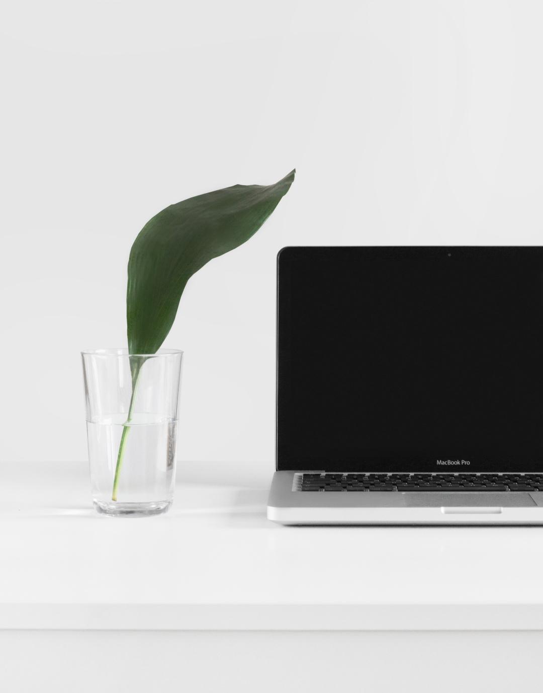 leaf-laptop-meleti-biwsimotitas-skopimotitas